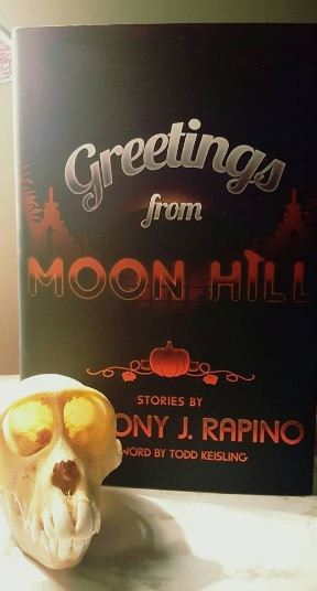 greetingsfrommoonhill